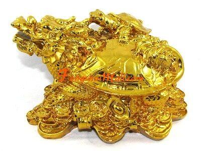 dragon-tortuga-talismanes-y-amuletos-2290763