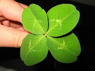 trebol-de-cuatro-hojas-atraer-la-buena-suerte-6392992