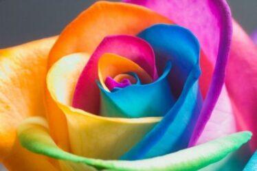 amuletos-y-taslismanes-colores-1415407