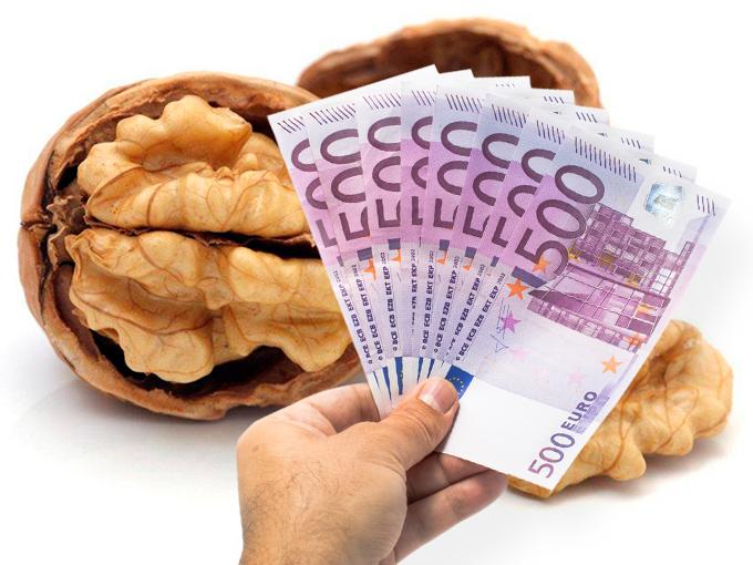 Amuleto de nuez para atraer el dinero 1106897