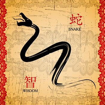 amuleto-de-poder-serpiente-china-9333224