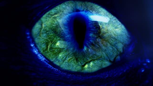 detectar-y-eliminar-el-mal-de-ojo-6650092