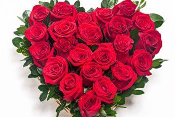 Hechizo de las 5 rosas para atraer el amor verdadero 360x240 5298528