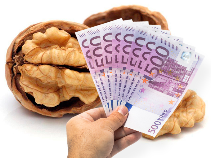 Amuleto de nuez para atraer el dinero 8747440
